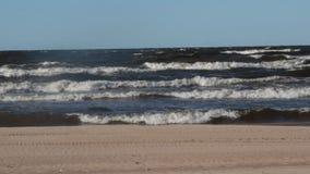 Grunt varmt hav stock video