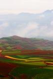 gruntowa czerwień zdjęcia stock