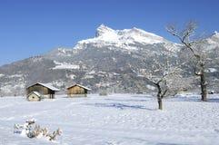 gruntowy blanc mont Zdjęcie Royalty Free