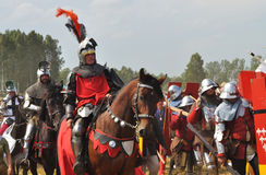 grunwald сражения Стоковое Фото