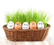 Grupa Śmieszni szaleni uśmiechnięci jajka w koszu z trawą. słońca skąpanie. Zdjęcie Royalty Free
