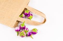 Grupa świeża purpurowa oberżyna na workowej torbie Obraz Stock