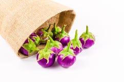 Grupa świeża purpurowa oberżyna w workowej torbie Zdjęcia Stock