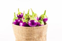 Grupa świeża purpurowa oberżyna w workowej torbie Zdjęcie Royalty Free
