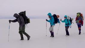Grupa aktywni mężczyźni i kobiety chodzi przez zamarzniętą rzekę w silnej zimie z plecaka ans narciarskimi słupami meandrujemy zbiory
