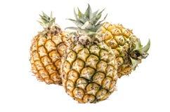 Grupa ananasy odizolowywający na białym tle: Ścinek ścieżka Obrazy Stock