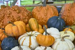 Grupa banie różni kolory Halloween personel fotografia stock