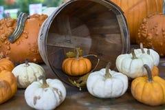 Grupa banie różni kolory Halloween personel zdjęcia stock