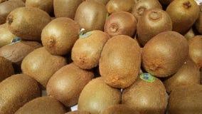 grupa bardzo świeża kiwi owoc Zdjęcie Royalty Free
