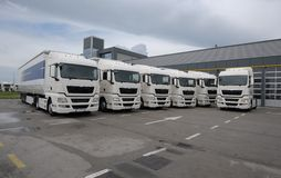 Grupa brandnew ciężarówki parkować przed firmą lokuje Zdjęcia Stock