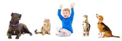 Grupa ciekawi zwierzęta domowe i szczęśliwa chłopiec Zdjęcia Stock