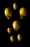 Grupa czaszki Fotografia Royalty Free