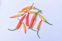 Grupa czerwoni chillies Zdjęcia Royalty Free