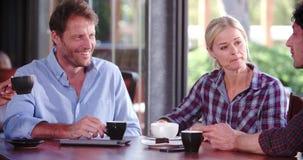 Grupa Dojrzali przyjaciele Siedzi W sklep z kawą gawędzeniu zbiory wideo
