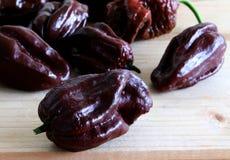 Grupa dojrzewający capsicum chinense prawdziwi gorący pieprze na drewnianym stole, Habanero czekolada Obrazka projekt dla foods t zdjęcie stock