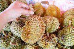 Grupa durian w rynku Obrazy Stock