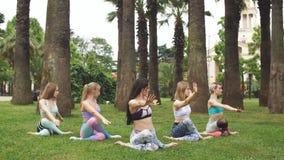 Grupa dysponowane kobiety robi joga pozy medytaci przy plenerowym zieleń parkiem uprawia ogródek zdjęcie wideo