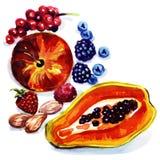 Grupa egzotyczne owoc Zdjęcie Stock