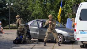 Grupa fachowi żołnierze w wojskowych uniformach z broniami w ręce uchwytał przestępcy samochodem obok flaga państowowa zbiory wideo