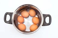 Grupa jajka zanurzeni w wodzie obraz royalty free