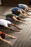 Grupa jogów ludzie w Balasana pozie Zdjęcia Royalty Free