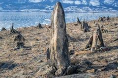 Grupa kamienie i kopowie przy zamarzniętym jeziornym Baikal tłem Obraz Stock