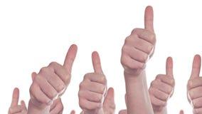 Grupa Kaukascy biali ludzie robi ręk aprobatom podpisuje Jak jak, zatwierdzenia lub poparcia pojęcie zdjęcie wideo