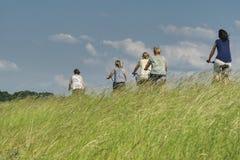 Grupa kobiety jedzie bicykle na pogodnym wiosna dniu wśród wysokiej trawy zdjęcia royalty free