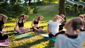 Grupa kobiety przechyla szyję w parku na lato pogodnym ranku pod przewodnictwem trener zbiory