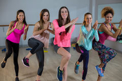 Grupa kobiety wykonuje aerobiki obraz stock
