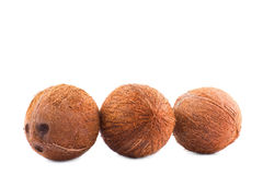 Grupa koks odizolowywający na błyszczącym tle Koks z ścinek ścieżką Smaczny coco pełno witaminy Odżywcze dokrętki zdjęcia stock