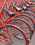 Grupa kolorowi klasyczni czerwoni bicykle dla czynszu na ulicie miasto Padua, Włochy zdjęcia royalty free