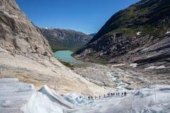 Grupa lodowa wycieczkowicza odprowadzenia puszka lodowiec na słonecznym dniu Pokazywać eksplorację i krańcowego sporta wyzwanie obrazy stock