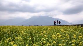 Grupa lokalni podróżnicy cieszy się wolnego przemierzającego czasu wolnego spacer wokoło pięknego pola fotografia stock