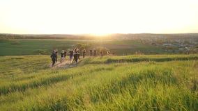 Grupa ludzi biega outdoors zdjęcie wideo