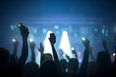 Grupa ludzi cieszy się koncert obrazy stock
