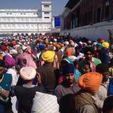 Grupa ludzi przy złotą świątynią, Amritsar, Punjab, ind Zdjęcia Royalty Free