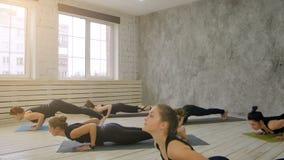 Grupa ludzi relaksuje joga i robi, ćwiczy zmniejszający się pies zdjęcie wideo