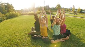 Grupa ludzi robi joga zbiory