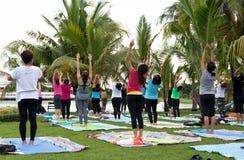 Grupa ludzi uczestniczy joga w parku z logem sprawność fizyczna, najpierw nowa równowaga i nike i Obraz Stock