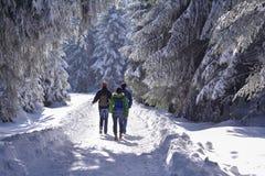 Grupa ludzi wycieczkuje w śnieżnym Czarnym lesie, Niemcy Obrazy Stock