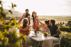 Grupa ludzi wznosi toast wino podczas obiadowego przyjęcia obraz stock