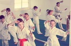 Grupa młode dzieci robi karate kopnięciom Obrazy Stock