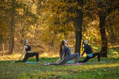 Grupa młode kobiety robi joga akcji ćwiczy w parku pojęcie zdrowego stylu życia obrazy stock
