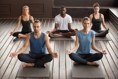 Grupa młodzi jogów ludzie siedzi w Sukhasana ćwiczeniu Zdjęcia Stock
