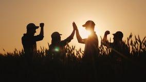 Grupa młodzi rolnicy robi ocenie wysocy pięć w polu banatka Sukces w przemysle rolnym fotografia royalty free
