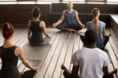 Grupa młodzi sporty ludzie siedzi w Sukhasana ćwiczeniu Zdjęcie Royalty Free
