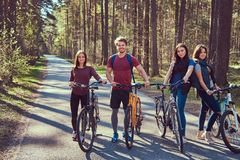Grupa m?odzi przyjaciele wycieczkuje przez lasu z rowerami na pi?knym letnim dniu obraz royalty free