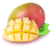 Grupa mango odizolowywający na białym tle Zdjęcie Stock