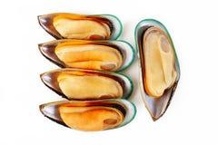 Grupa mussels Fotografia Stock
